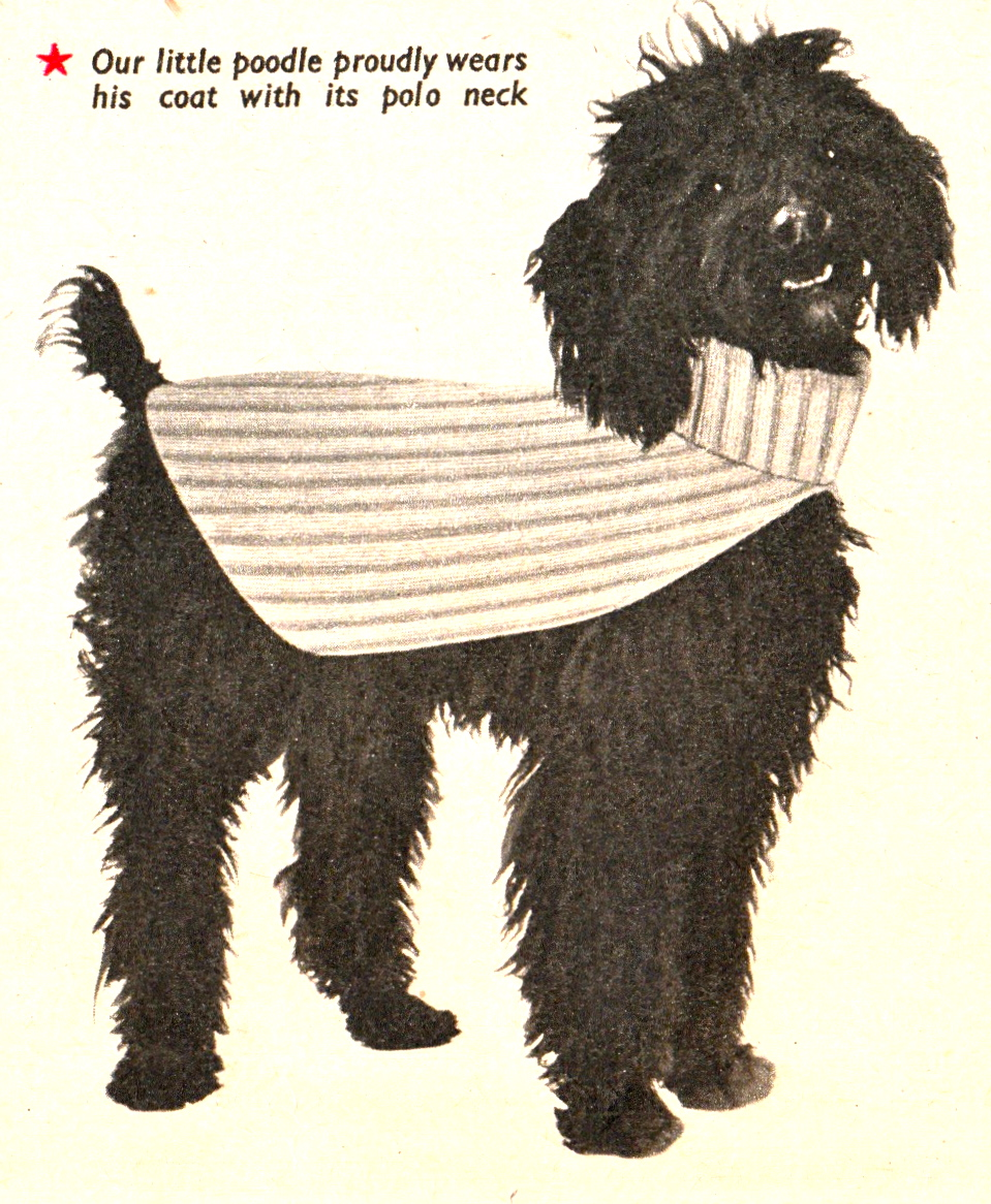 Vintage knitting pattern for poodle dog coat with matching owner ...